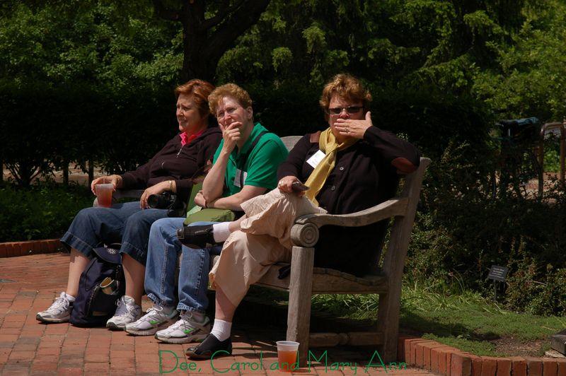 Dee, Carol and Mary Ann