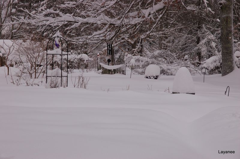 Jan. Garden Gate