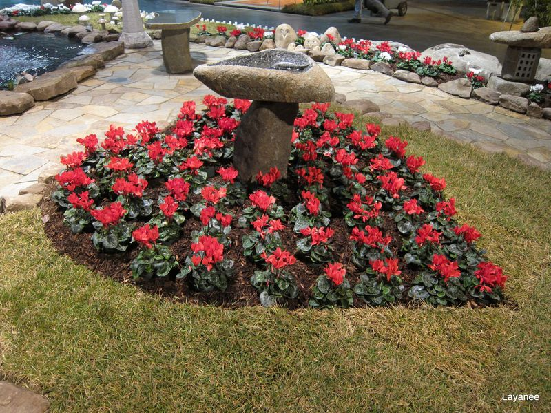 Ledge and gardens: rhode island spring flower & garden show 2011
