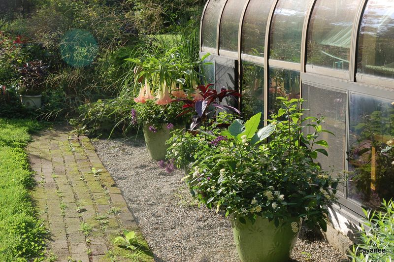 Greenhouse containers