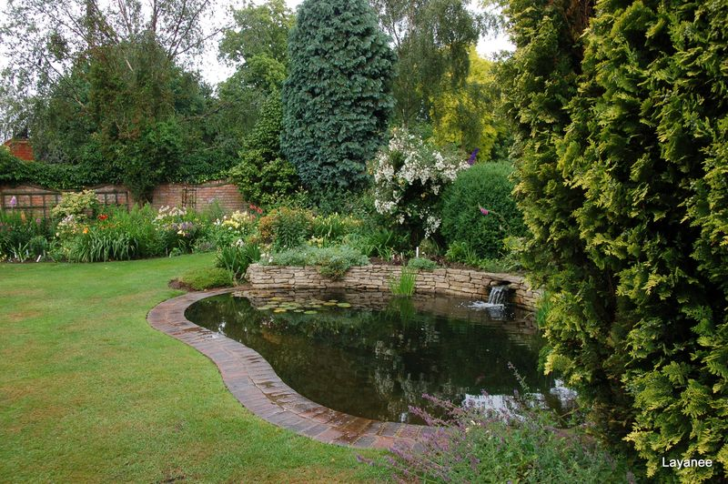 Fish Pond at Orchard Cottage