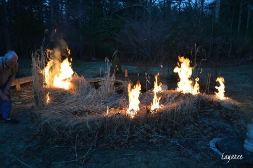 Grass burning 1