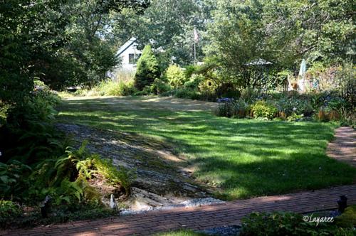 Drought-garden view